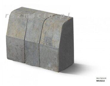 kravbord-multikolor-muszla-forbet-rszmicio